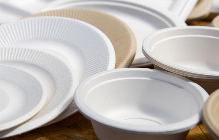 Disposable Crockery: Convenient or Dangerous?
