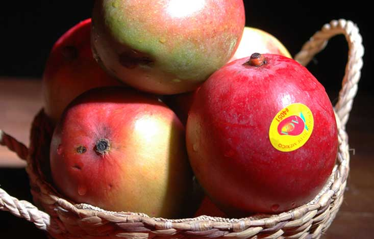 What do stickers on fruits and vegetables mean?
